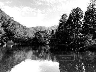 木々 に囲まれた水の体の写真・画像素材[854257]