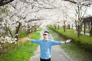 桜,男,男子,岐阜,自身