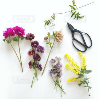 テーブルの上の花の花瓶の写真・画像素材[1072301]
