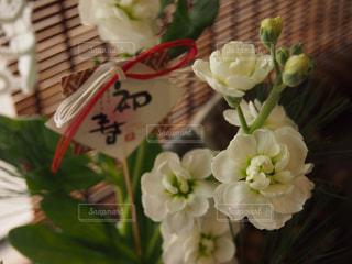 花 - No.301082