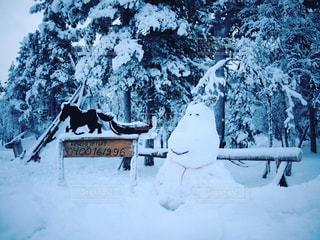 雪の写真・画像素材[341930]