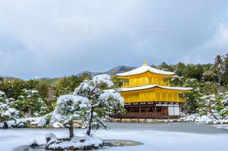 冬の写真・画像素材[531958]