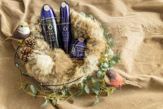 冬,スキンケア,保湿,基礎化粧品,ライスフォース,riceforce,ライスフォースのある暮らし