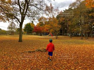 公園を歩く少年 - No.879679