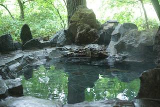 露天風呂の写真・画像素材[800251]