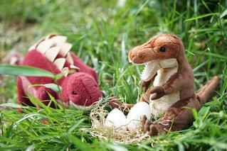 たまごを見守る恐竜たちの写真・画像素材[1187771]