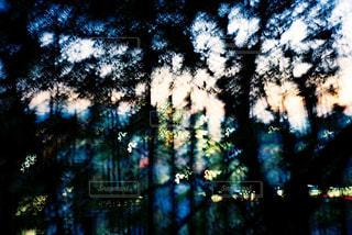夕日をトイカメラでパシャリの写真・画像素材[721261]