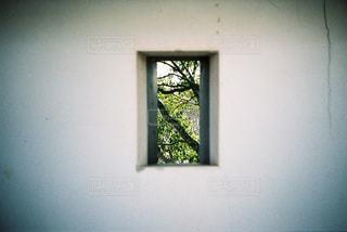 唐津城の狭間の写真・画像素材[732785]