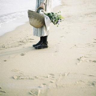 浜辺にての写真・画像素材[1800047]