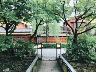 建物の前にツリーの写真・画像素材[906831]