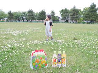 お気に入りの公園で大好きなルルロロと一緒の写真・画像素材[2242499]