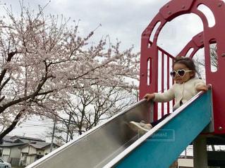 滑り台からお花見の写真・画像素材[3082093]