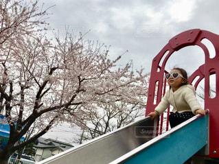滑り台の上からお花見の写真・画像素材[3082092]