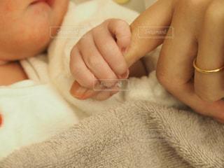 親子の写真・画像素材[549838]
