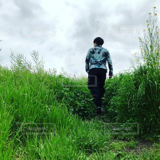 自然,風景,森林,屋外,後ろ姿,Instagram,景色,背中,旅行