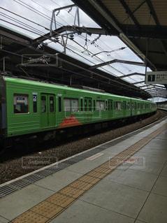 No.454969 緑