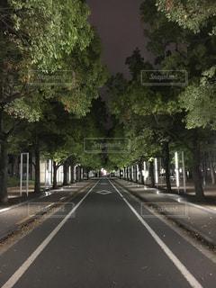 通りの脇に木がある空の道の写真・画像素材[2725688]