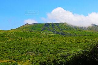 背景の山に大規模なグリーン フィールドの写真・画像素材[766921]