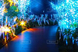 夜のトラフィックでいっぱい通りの写真・画像素材[915581]