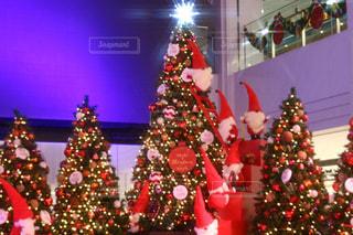 赤,クリスマス,サンタ,クリスマスツリー,クリスマスの思い出