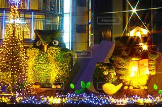 夜,カラフル,光,イルミネーション,池袋,装飾,クリスマスの思い出,いけふくろう,池袋駅西口