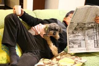 犬と一緒にテーブルに座って人の写真・画像素材[986782]