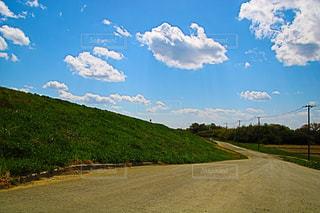 背景の木と大規模なグリーン フィールド - No.1116483