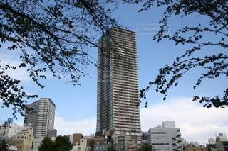 都市の高層ビル - No.1123412