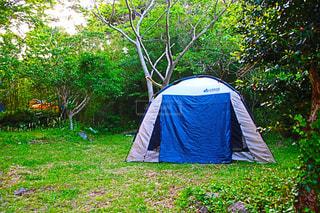 芝生の庭でテントの写真・画像素材[1159342]