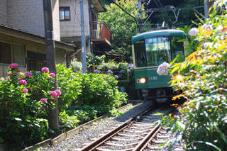 建物の近く下り列車を走行する列車を追跡します。の写真・画像素材[1257670]