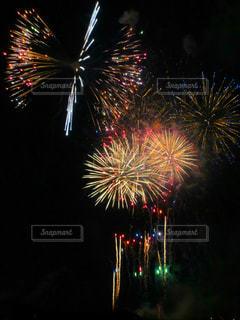 夜空の花火の写真・画像素材[1310989]