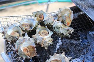 海,貝,バーベキュー,BBQ,千葉,サザエ,九十九里,海の家,夏バテ,暑さ対策