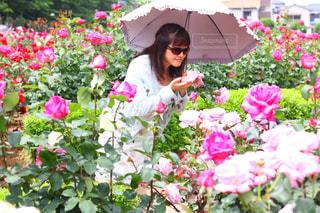 ピンクの花の女性は、庭園の写真・画像素材[1371362]