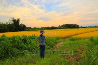 緑豊かな緑のフィールドに立っている少年の写真・画像素材[1399154]