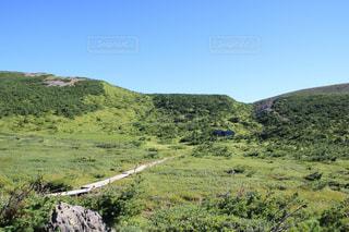 背景の山に大規模なグリーン フィールドの写真・画像素材[1403935]