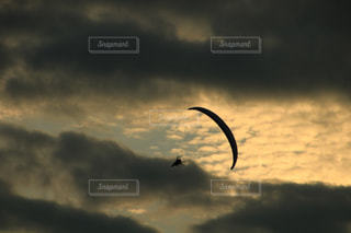 曇りの日に雲の上を飛んでいる鳥の写真・画像素材[1480790]