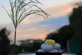 テーブルの上の花の花瓶の写真・画像素材[1480957]