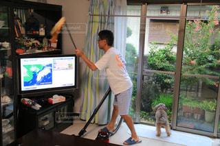 犬,室内,自宅,清掃,掃除機,お掃除