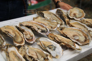 牡蠣,バーベキュー,カキ,食欲の秋
