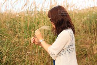 草の中に立っている少女の写真・画像素材[1528995]