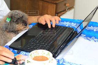 テーブルの上に座っているラップトップ コンピューターを使用している人の写真・画像素材[1558538]