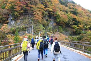 橋の上を歩く人々 のグループの写真・画像素材[1597726]