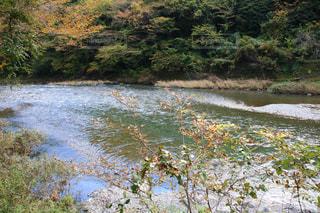 水の体を流れる川の写真・画像素材[1597878]