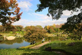 緑の芝生と木々 に囲まれた湖の景色の写真・画像素材[1598701]