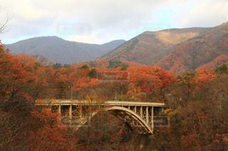 背景の山と川に架かる橋を渡る列車の写真・画像素材[1611825]