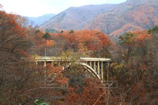 背景の山の橋の写真・画像素材[1611828]
