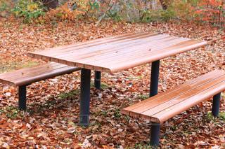 木製フェンスの上に座って空の公園ベンチの写真・画像素材[1611839]