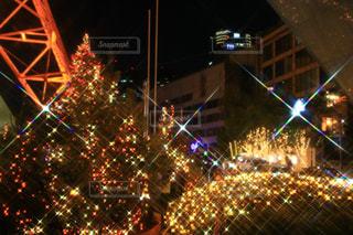夜のライトアップされた街の写真・画像素材[1624490]
