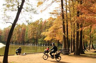 バイクの後ろに乗っている人のグループの写真・画像素材[1625842]