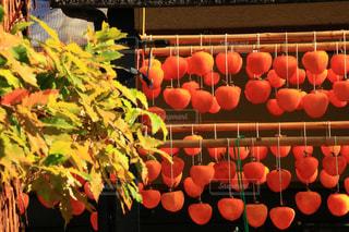 オレンジのテーブルの上に座っているの束の写真・画像素材[1634880]